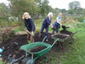 Allotment holders