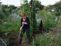 Allotment holder